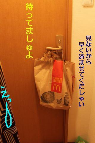 IMG_01427q.jpg