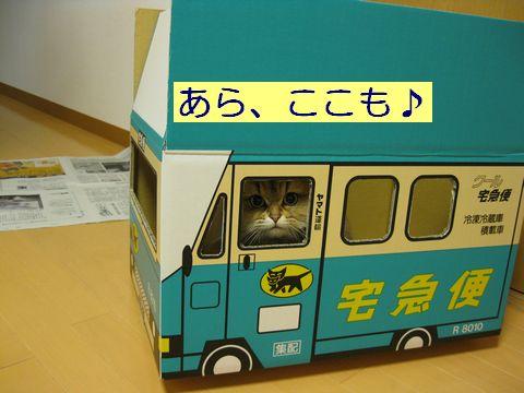 IMG_0558d.jpg