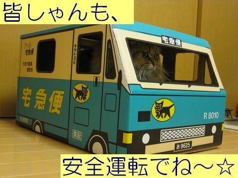 IMG_0709c.jpg