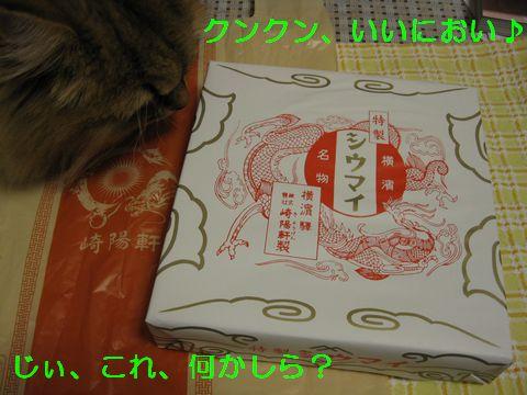 IMG_0714b.jpg