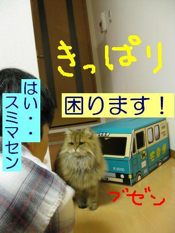 IMG_0826d.jpg