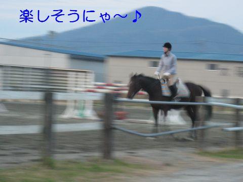 IMG_0844b.jpg