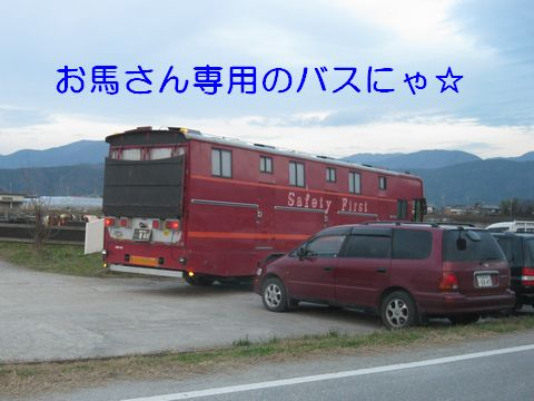 IMG_0846c.jpg