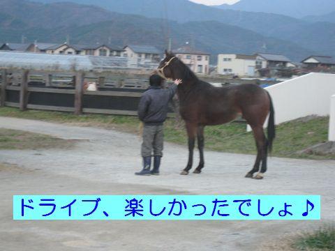IMG_0848c.jpg