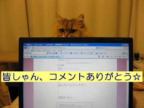 IMG_0884c.jpg