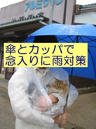 IMG_0911b.jpg