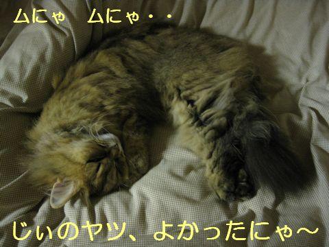 IMG_2368f.jpg