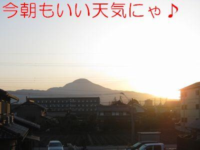 IMG_2392f.jpg