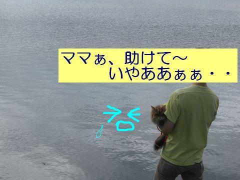 IMG_4009q.jpg