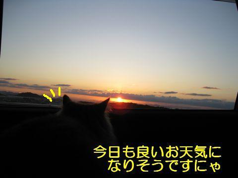 IMG_6573q.jpg