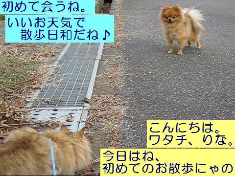 MVI_0685c.jpg
